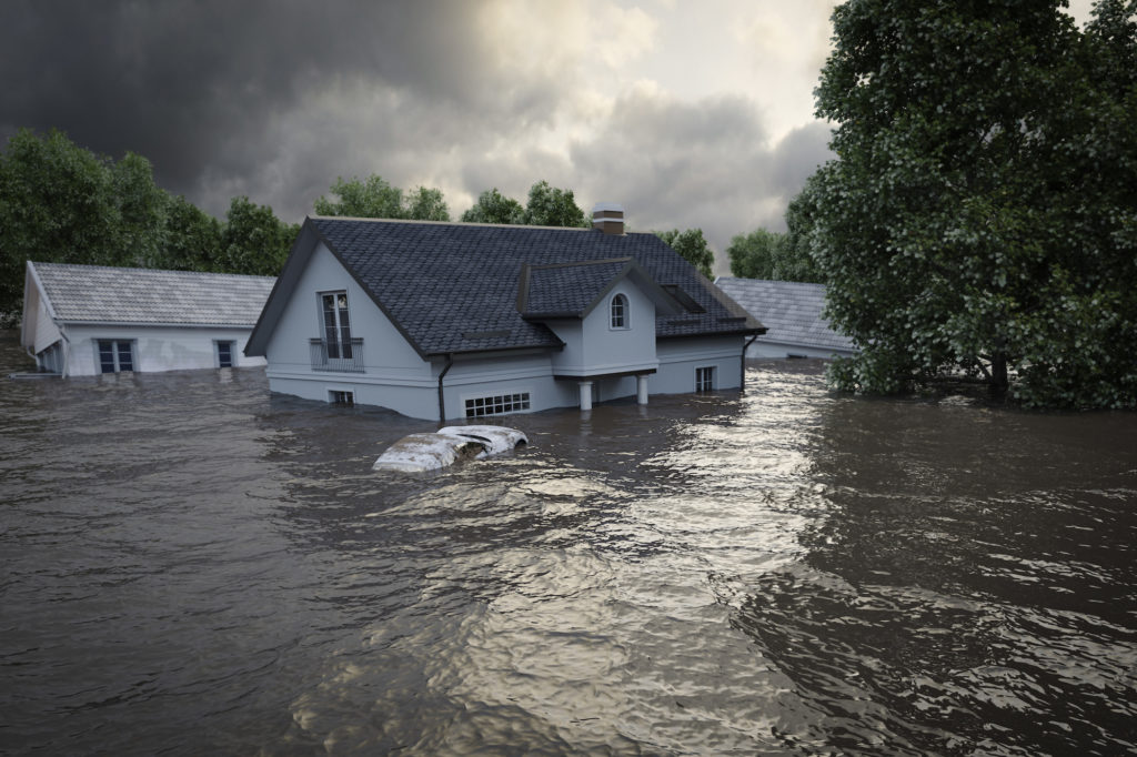 flooding house rendering